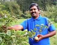 Volunteer at Orchard